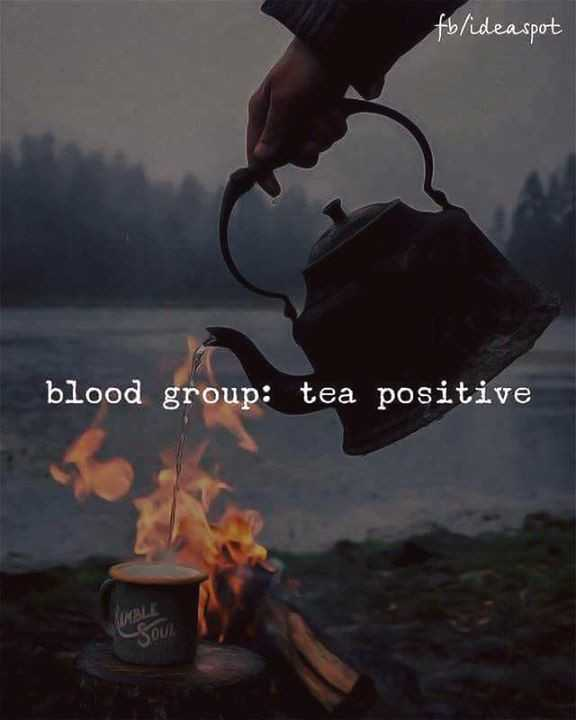 🍵 चाय दिवस - fb / idea spot blood group : tea positive - ShareChat