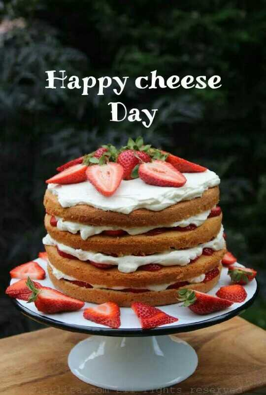 🍞चीज़ डे - Happy cheese Day ghts reserve - ShareChat