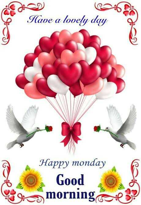 🐯 चेन्नई vs राजस्थान 💗 - Have a lovely day Happy monday Good boca morning cere ? - ShareChat
