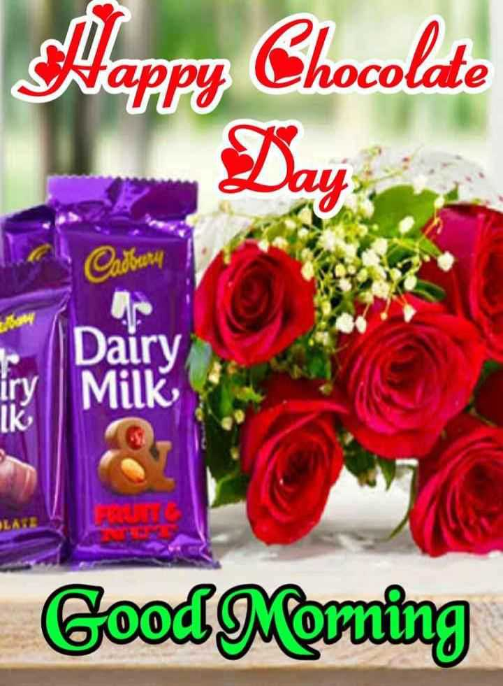🍫 चॉक्लेट डे - Happy Chocolate hocolate Cadbury 1600 Dairy iry Milk Good Morning - ShareChat