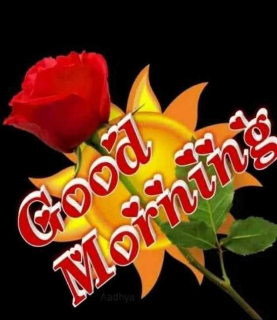 🙏 जय जोहार - ( Chond Morning - ShareChat