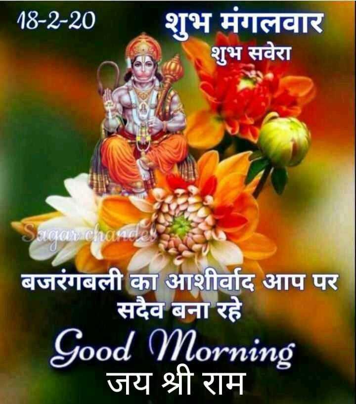 🙏🌺जय बजरंगबली🌺🙏 - 18 - 2 - 20 शुभ मंगलवार शुभ सवेरा Sagarcharad बजरंगबली का आशीर्वाद आप पर सदैव बना रहे Good Morning जय श्री राम - ShareChat