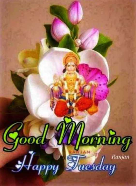 🙏🌺जय बजरंगबली🌺🙏 - Good luporning RANJAN Ranjan Happy Tuesday - ShareChat
