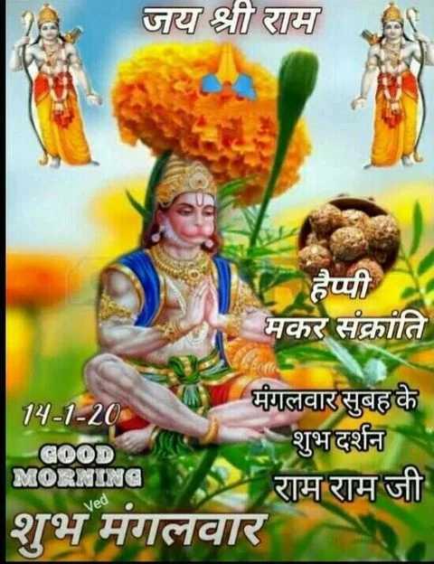 🙏🌺जय बजरंगबली🌺🙏 - जय श्री राम हैप्पी मकर संक्रांति 14 - 1 - 20 मंगलवार सुबह के GOOD शुभ दर्शन MORNING राम राम जी शुभ मगलवार Ved - ShareChat
