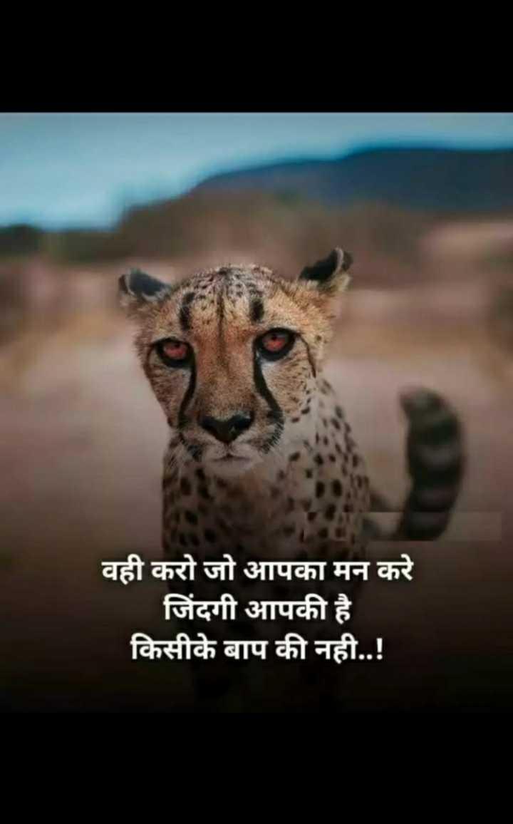 🙏जय महाराष्ट्र - वही करो जो आपका मन करे जिंदगी आपकी है किसीके बाप की नही . . ! - ShareChat
