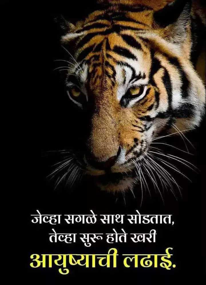 🙏जय महाराष्ट्र - जेव्हा सगळे साथ सोडतात , ' तेव्हा सुरू होते खरी आयुष्याची लढाई . - ShareChat