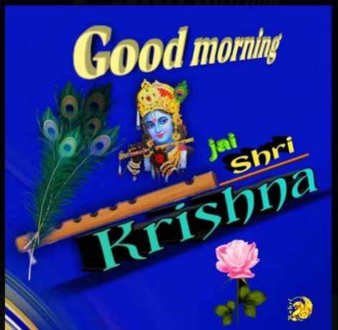 🌸 जय श्री कृष्ण - Good morning lai Shri Krishna - ShareChat