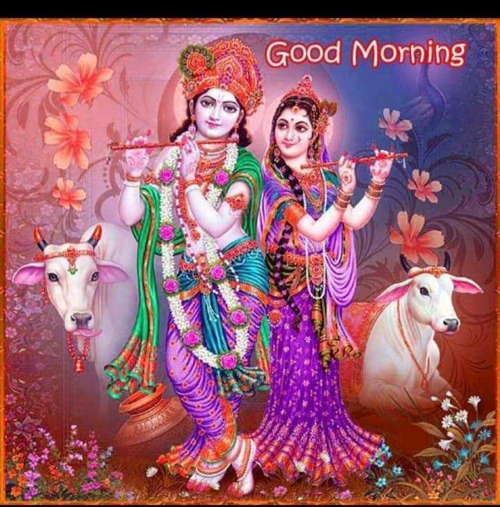 🌸 जय श्री कृष्ण - Good Morning - ShareChat
