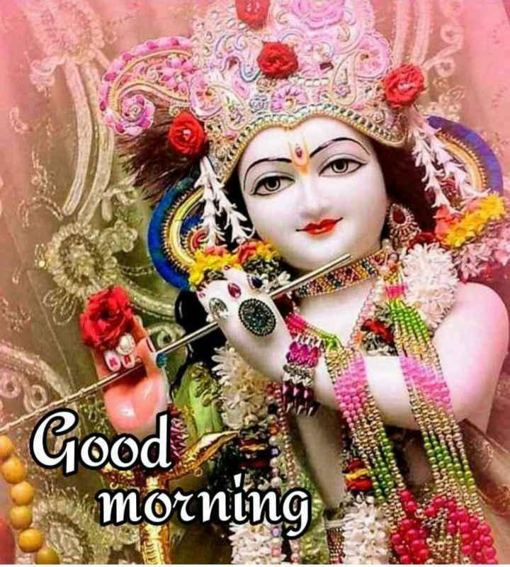 🌸 जय श्री कृष्ण - TOONOK Good morning - ShareChat