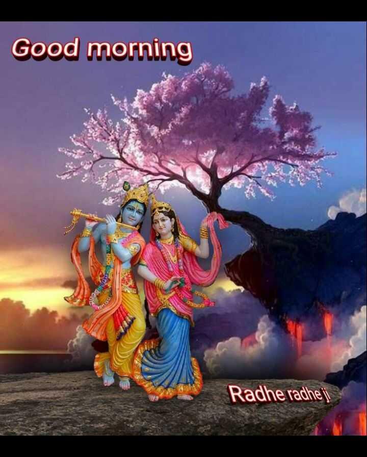 🌸 जय श्री कृष्ण - Good morning Radhe radheji - ShareChat