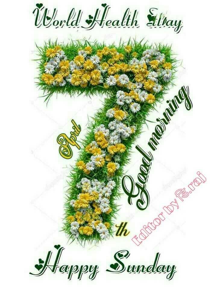 💪जागतिक आरोग्य दिवस - World Health Slay Pood morning Editor byərai Happy Sunday - ShareChat