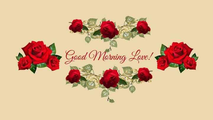 🥥 जागतिक नारळ दिन - Good Morning Love ! - ShareChat