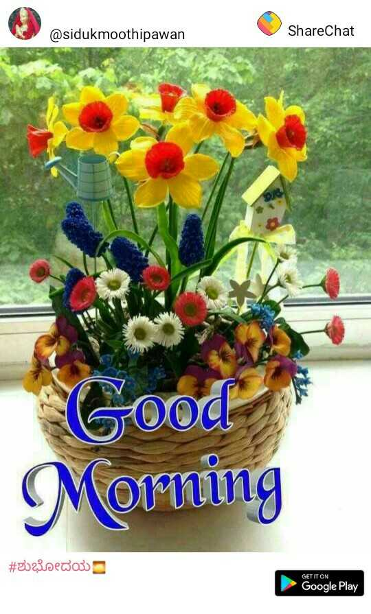 🔴जागतिक रक्तदाता दिवस - @ sidukmoothipawan ShareChat Good Morning # 2023sedou GETITON Google Play - ShareChat