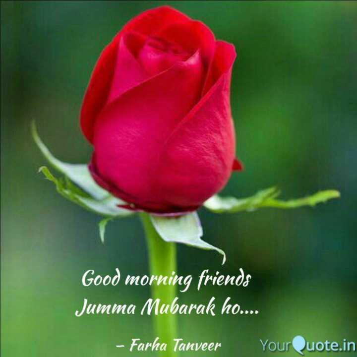 🕋जुमा मुबारक🕋 - Good morning friends Jumma Mubarak ho . . . . - Farha Tanveer YourQuote . in - ShareChat