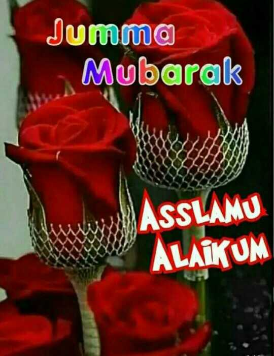 🌹जुम्मा मुबारक🌼 - Jumma Mubarak ASSLAMU ALAIKUM - ShareChat