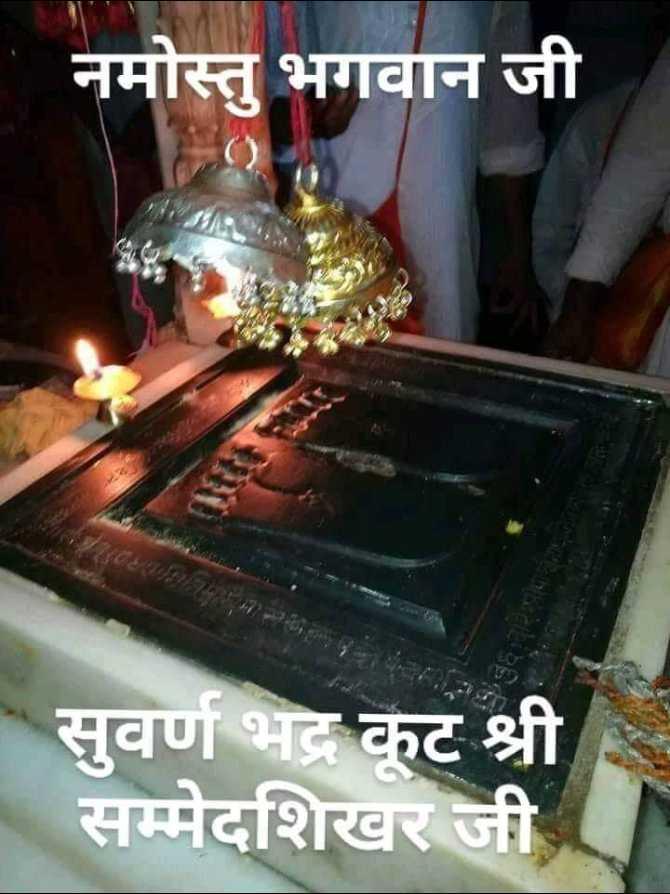 जैन धर्म : jain dharm - - नमोस्तु भगवान जी सुवर्ण भद्र कूट श्री सम्मेदशिखर जी - ShareChat