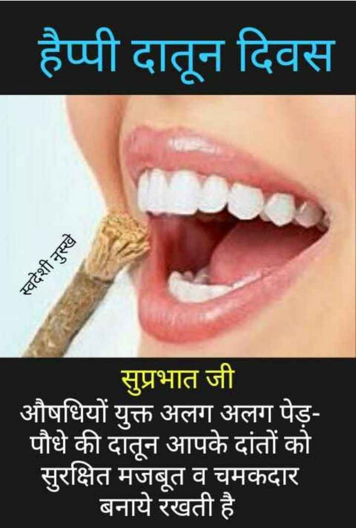 😀 टूथपेस्ट डे - हैप्पी दातून दिवस स्वदेशी नुस्खे - सुप्रभात जी औषधियों युक्त अलग अलग पेड़ पौधे की दातून आपके दांतों को सुरक्षित मजबूत व चमकदार बनाये रखती है - ShareChat