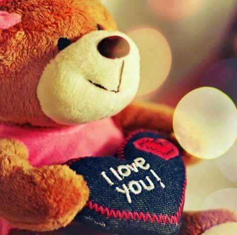 🐨टेडी बेयर डे - I love you ! - ShareChat