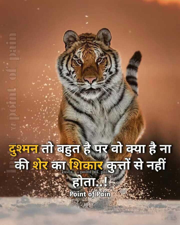 🆒 टैटू डिज़ाइन - @ point of pain दुश्मन तो बहुत है पर वो क्या है ना की शेर का शिकार कुत्तों से नहीं होता . Insta @ point of pai Point of Pain - ShareChat