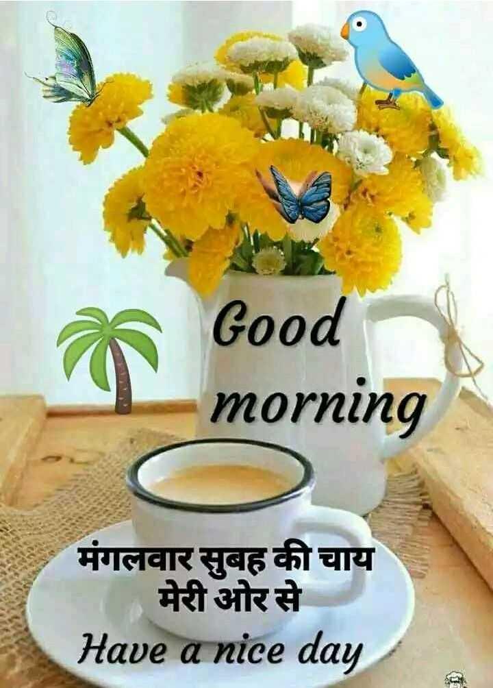 💃 डांस - Good morning मंगलवार सुबह की चाय   मेरी ओर से Have a nice day - ShareChat