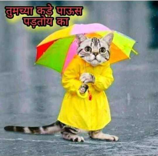 😇डोकं चालवा - तुमच्याकडे पाऊस । पड़तीयों का - ShareChat