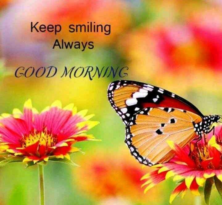 🦋 तितली और हमिंगबर्ड दिवस - Keep smiling Always COOD MORNIN - ShareChat