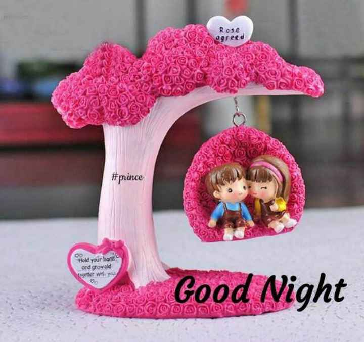 🎆  त्यौहार - Rose egreed S @ lone # prince Hold your lions and growold Rogether with you Good Night big @ YO ( 93 - ShareChat