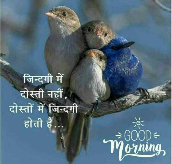 🌄तड़के की राम राम - जिन्दगी में दोस्ती नहीं , दोस्तों में जिन्दगी होती है . . . GOOD Morning - ShareChat