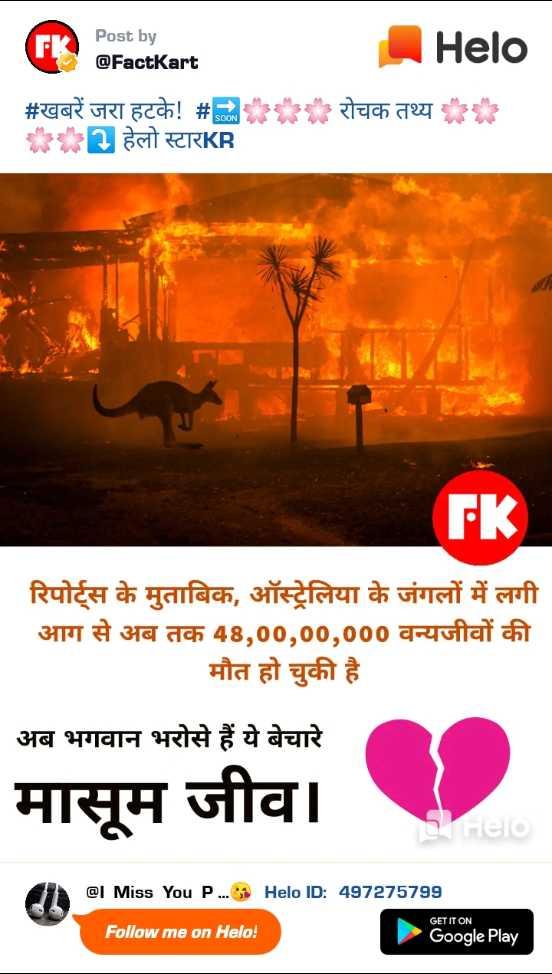 💔 दर्द-ए-दिल - Post by @ FactKart रोचक तथ्य # खबरें जरा हटके ! # EE * हेलो स्टारKR रिपोर्ट्स के मुताबिक , ऑस्ट्रेलिया के जंगलों में लगी आग से अब तक 48 , 00 , 00 , 000 वन्यजीवों की मौत हो चुकी है अब भगवान भरोसे हैं ये बेचारे मासूम जीवो . मासूम जीव । @ I Miss You P . . . B ID : 497275799 GET IT ON Follow me on ! Google Play - ShareChat