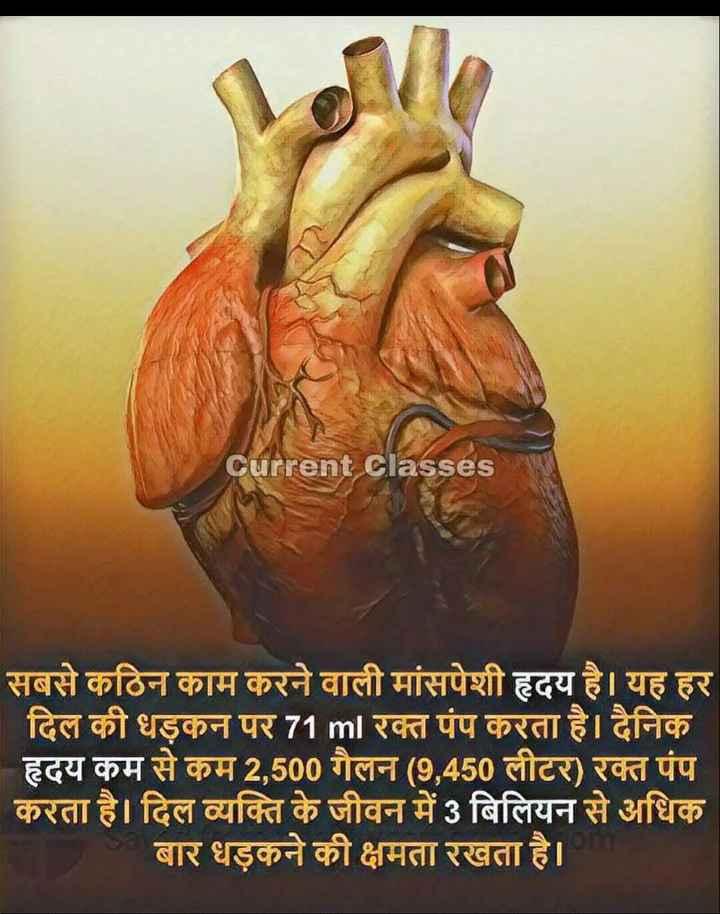 💔 दर्द-ए-दिल - Current Classes सबसे कठिन काम करने वाली मांसपेशी हृदय है । यह हर दिल की धड़कन पर 71 ml रक्त पंप करता है । दैनिक हृदय कम से कम 2 , 500 गैलन ( 9 , 450 लीटर ) रक्त पंप करता है । दिल व्यक्ति के जीवन में 3 बिलियन से अधिक बार धड़कने की क्षमता रखता है । - ShareChat