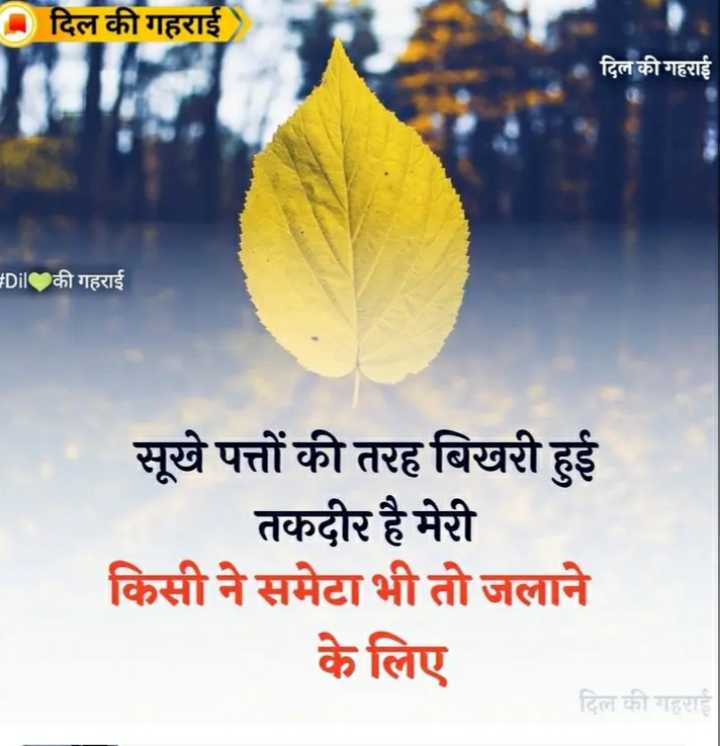 💔दर्द कहानियां - दिल की गहराई दिल की गहराई Dil की गहराई सूखे पत्तों की तरह बिखरी हुई तकदीर है मेरी किसी ने समेटा भी तो जलाने के लिए दिल की गहराई - ShareChat
