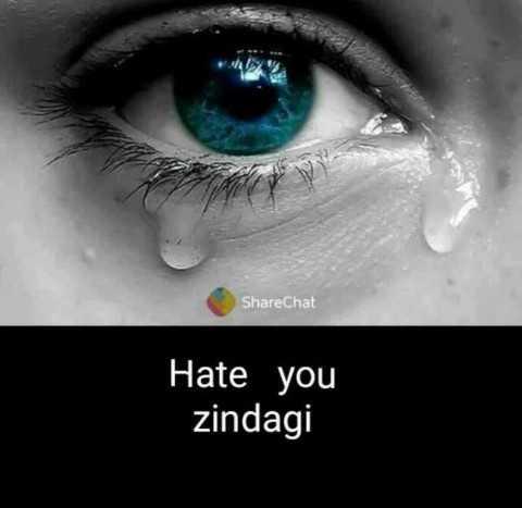 दर्द मेरी ज़िंदगी - ShareChat Hate you zindagi - ShareChat