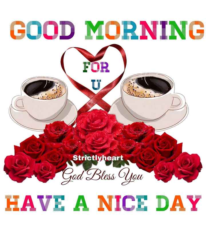दिल धडकने दो - GOOD MORNING FOR Strictlyheart Strictlyheart God Bless You HAVE A NICE DAY - ShareChat