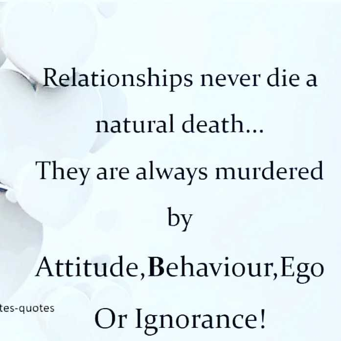 👬दोस्ती-यारी - Relationships never die a natural death . . . They are always murdered by Attitude , Behaviour , Ego ates - quotes Or Ignorance ! tes - quotes - ShareChat