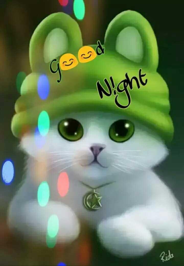 🥜नट्स डे - Night - ShareChat