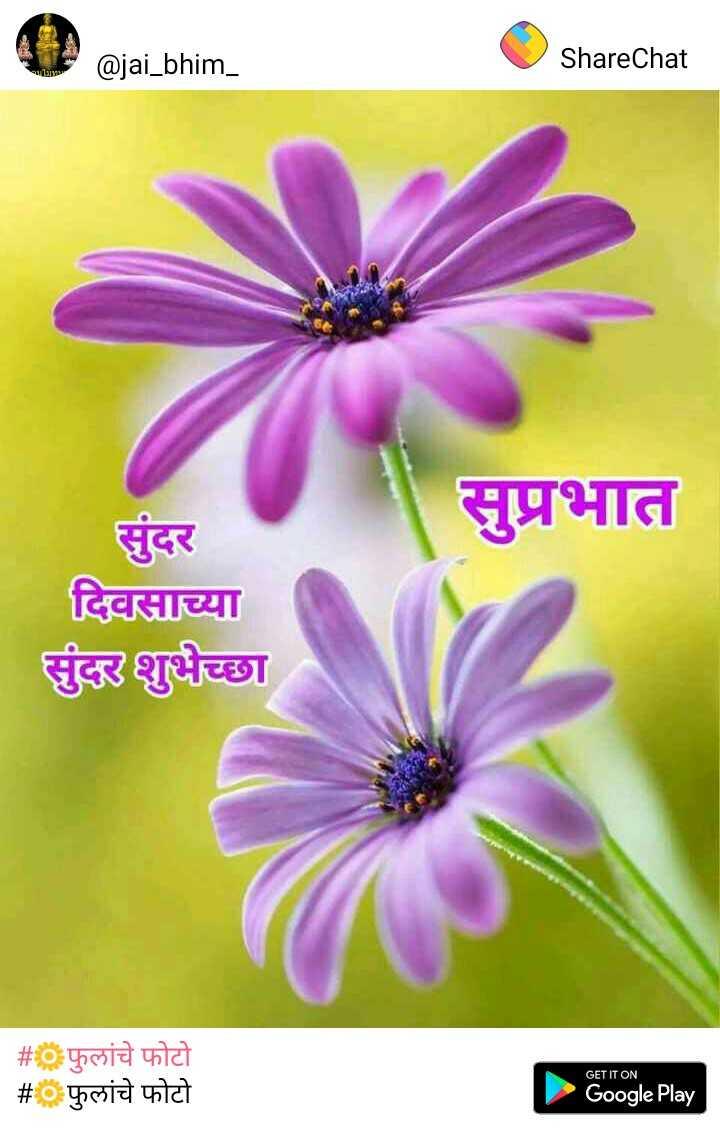 🆕 नवरात्री name art - @ jai _ bhim _ ShareChat सुप्रभात सुंदर दिवसाच्या सुंदर शुभेच्छा # फुलांचे फोटो # फुलांचे फोटो GET IT ON Google Play - ShareChat
