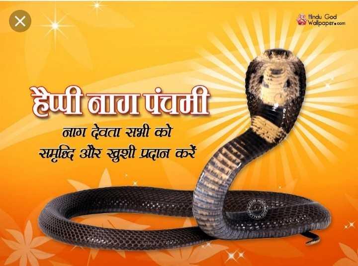 🐍 नाग पंचमी - Hindu God Wallpaper . com हैप्पी लखी । नाग देवता सभी को समविद और खुशी प्रदान करें - ShareChat