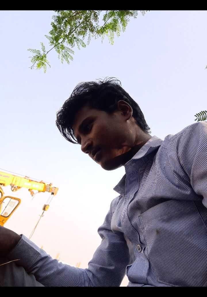 📹 नाचो गाओ न्यू ईयर वीडियो बनाओ - - பா இலை மரபைக் காத்து WIN Rece - ShareChat