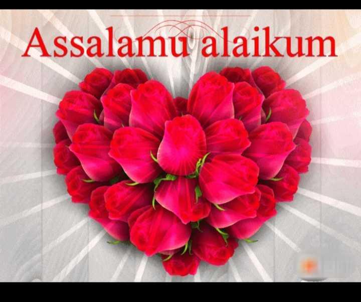 🤲 नात-ए-शरीफ - Assalamu alaikum - ShareChat
