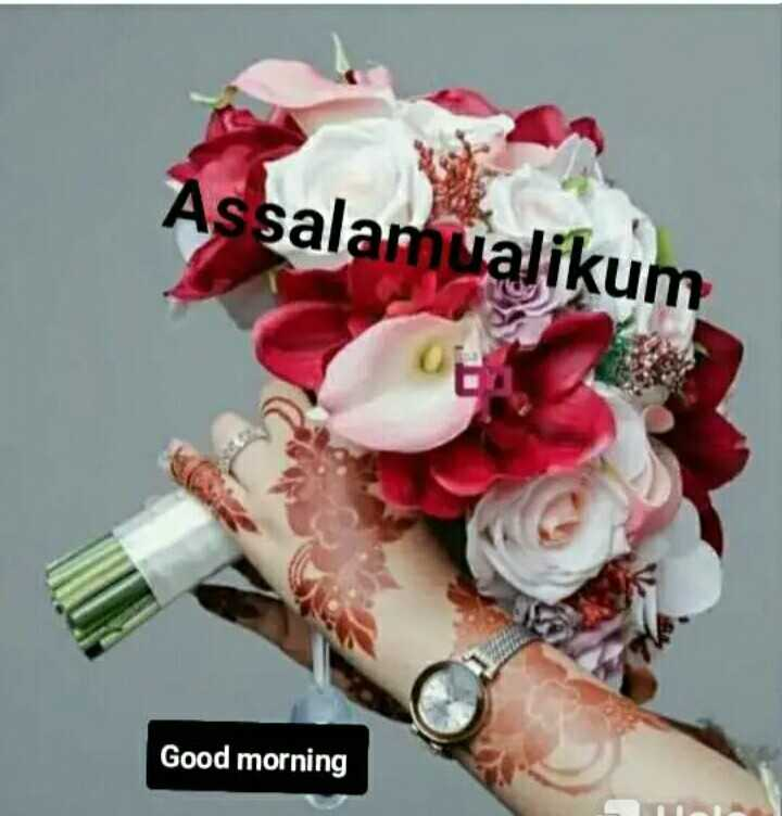 🤲 नात-ए-शरीफ - Assalamualikum Good morning - ShareChat