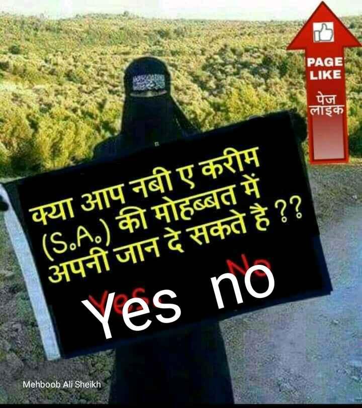 🤲 नात-ए-शरीफ - PAGE LIKE पंज लाइक क्या आप नबी ए करीम ( S . A . ) की मोहब्बत में अपनी जान दे सकते है ? ? Yes no Mehboob Ali Sheikh - ShareChat