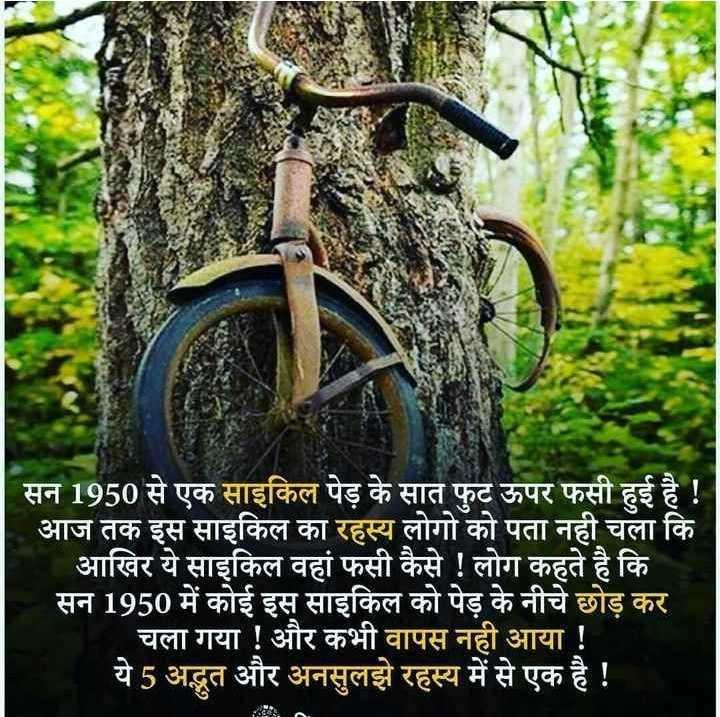 💻 नेशनल टेक्नोलॉजी डे - सन 1950 से एक साइकिल पेड़ के सात फुट ऊपर फसी हुई है ! आज तक इस साइकिल का रहस्य लोगो को पता नही चला कि आखिर ये साइकिल वहां फसी कैसे ! लोग कहते है कि सन 1950 में कोई इस साइकिल को पेड़ के नीचे छोड़ कर   चला गया ! और कभी वापस नही आया ! ये 5 अद्भुत और अनसुलझे रहस्य में से एक है ! - ShareChat