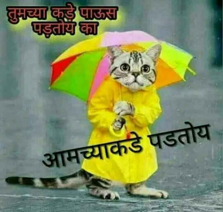 ⛈पावसाळा फोटो - तुमच्या कडे पाऊस पडतोय का आमच्याकडे पडतोय - ShareChat