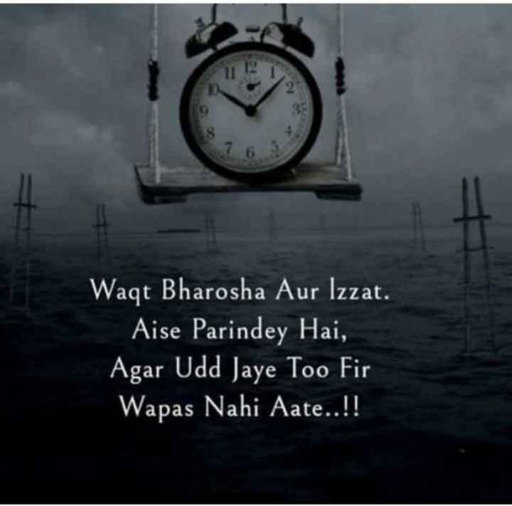 📺 पुरानी_यादें - Waqt Bharosha Aur Izzat . Aise Parindey Hai , Agar Udd Jaye Too Fir Wapas Nahi Aate . . ! ! - ShareChat