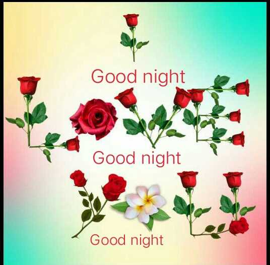 🛍पेपर बैग डे - Good night Good night Good night - ShareChat