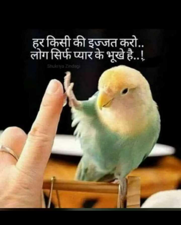 🌱पौधों को पानी - हर किसी की इज्जत करो . . लोग सिर्फ प्यार के भूखे है . . ! Shukriya Zindagi - ShareChat