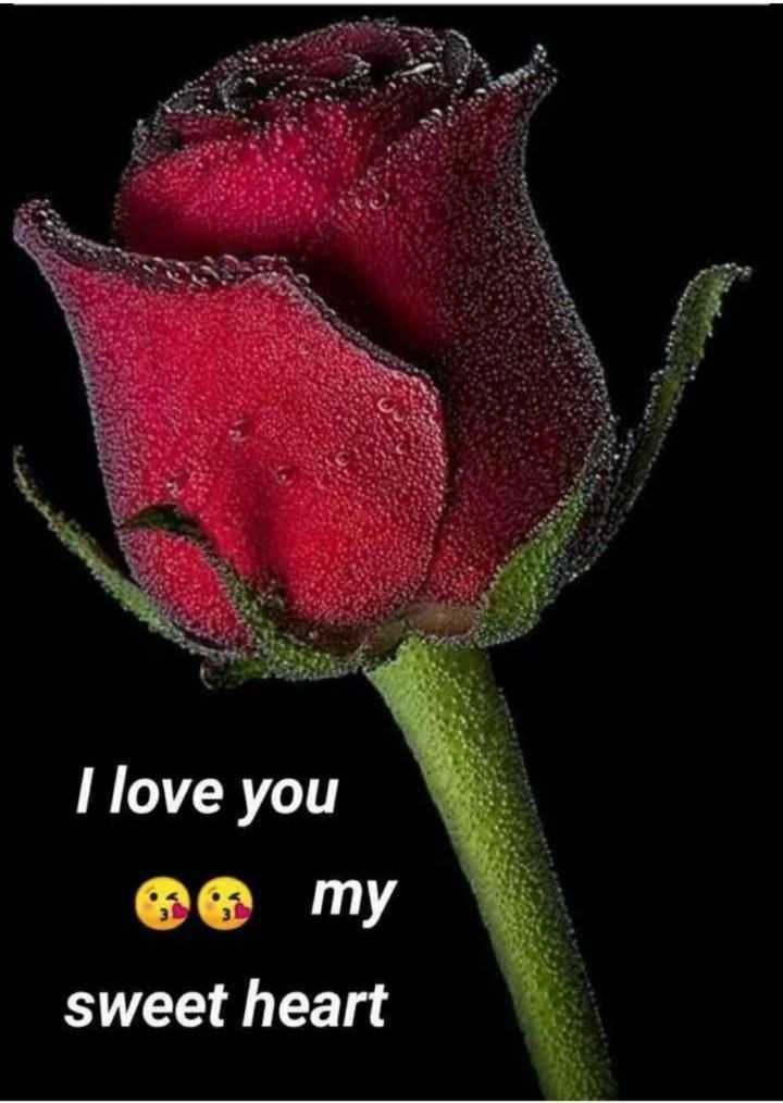🌹प्रेमरंग - I love you e my sweet heart - ShareChat