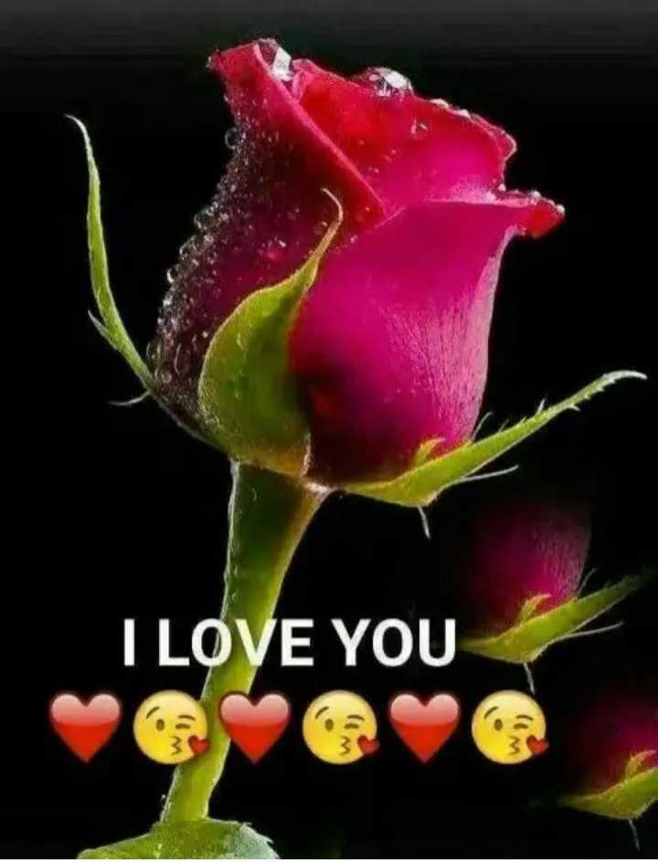 🌹प्रेमरंग - I LOVE YOU - ShareChat