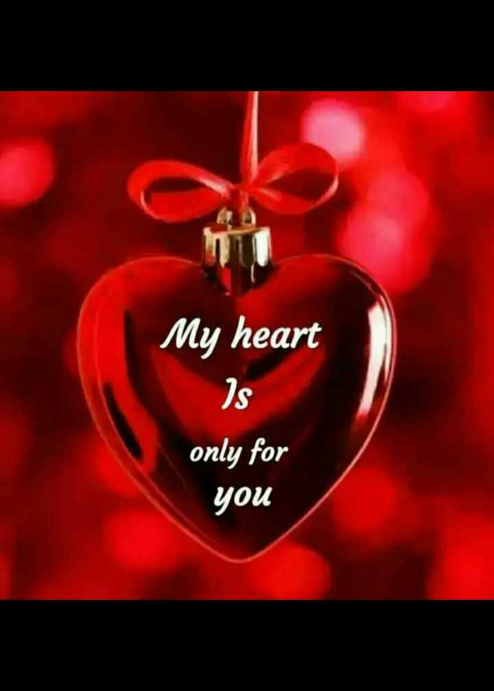 🌹प्रेमरंग - My heart Is only for you - ShareChat