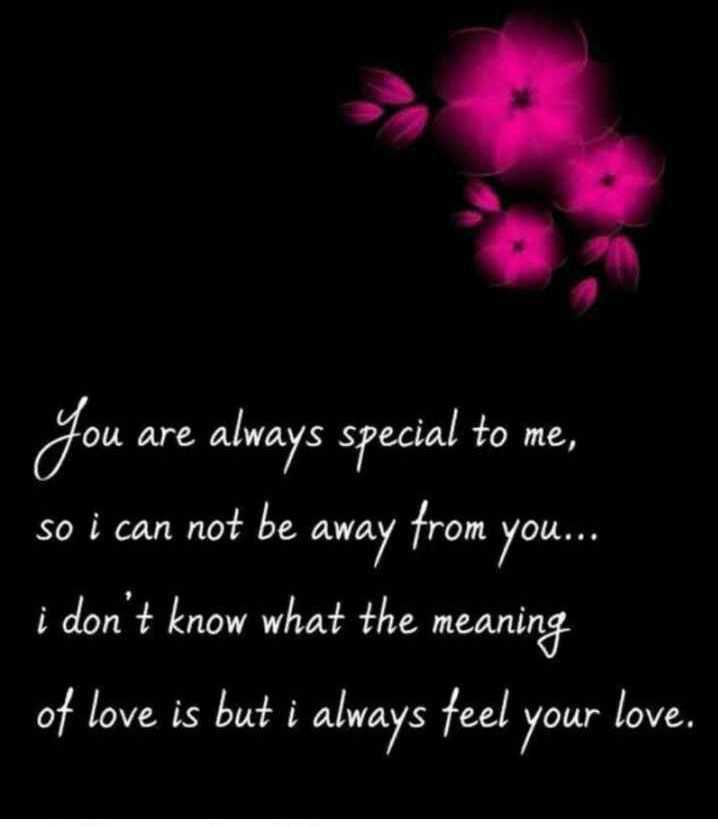 🌹प्रेमरंग - Mo Fou are always S ei You are always special to me , so i can not be away from you . . . i don ' t know what the meaning of love is but i always feel your love . - ShareChat